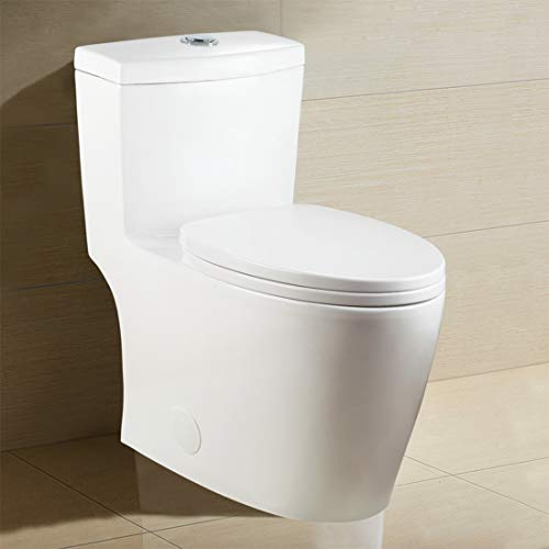 Winzo WZ5028 Elongated One Piece Toilet, High Efficiency Dual Flush