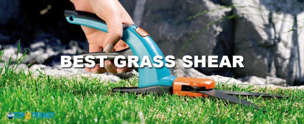 Best Grass Shear